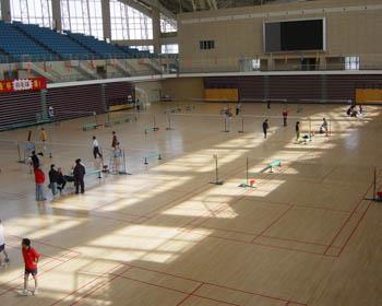 Perfect Badminton Sports Flooring