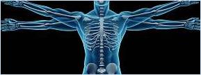 Utah's Best Chiropractic Care