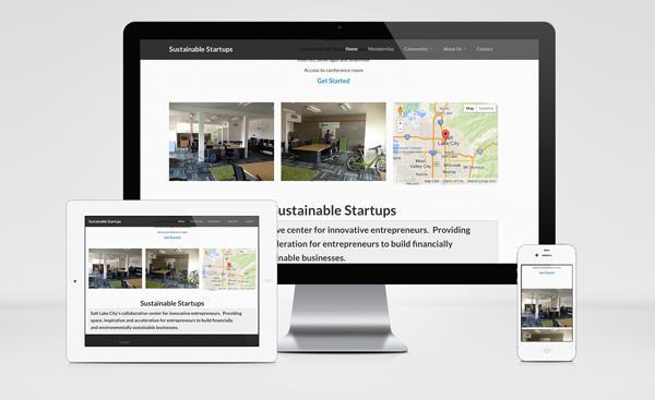 Sustainable Startups