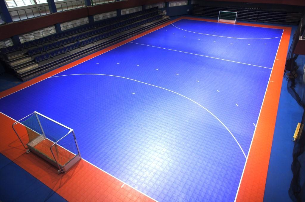 Roller hockey courts for indoor and outdoor play sport court for Indoor sport court