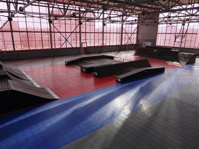 Roller Sports
